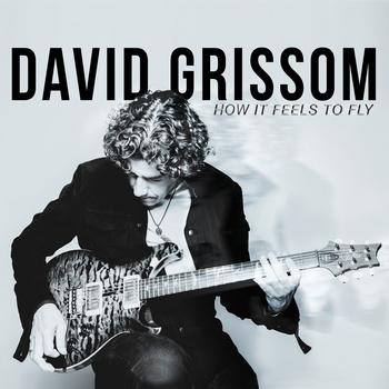 Geplantes Konzert mit DAVID GRISSOM im Albatros muß abgesagt werden