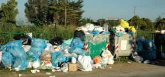 Sauberes Rendsburg! Samstag großes Müllsammeln in der Stadt