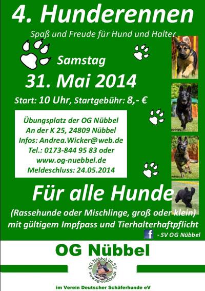 Hunderennen in Nübbel