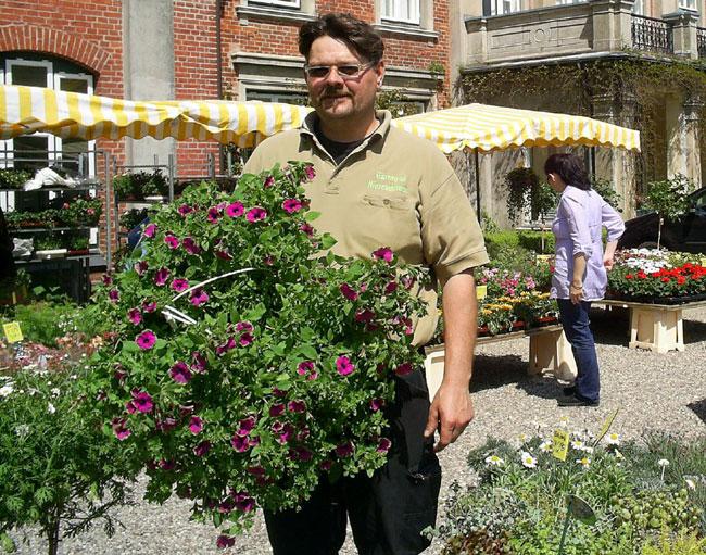 Schleswig-Holstein Gartenfestival auf Gut Altenhof