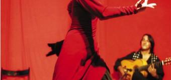 Flamenco im Carls Eckernförde  – Azabache Flamenco