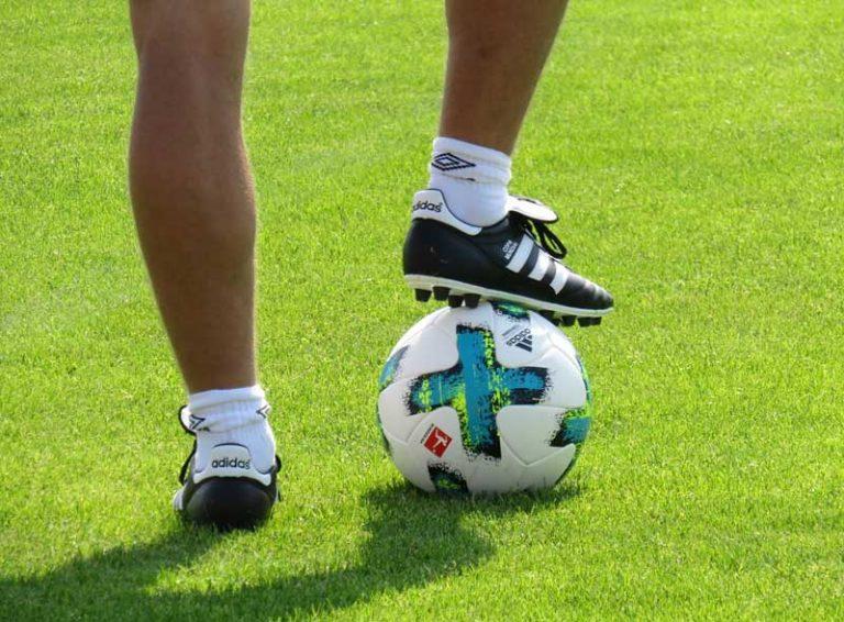 Die Spitzengehälter in der Bundesliga
