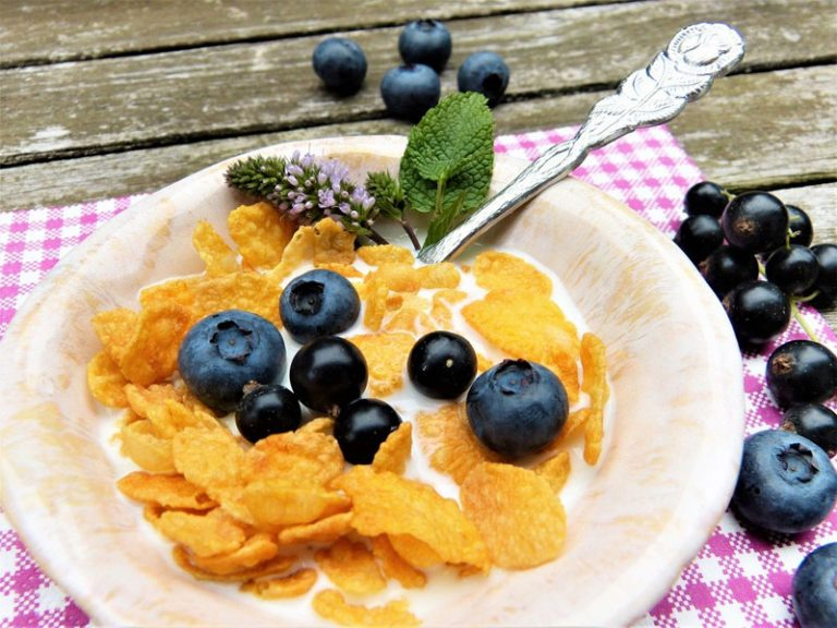 Was versteht man unter Fruktose